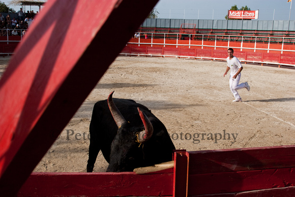 flying plank - a bull ripping up the arena wall.