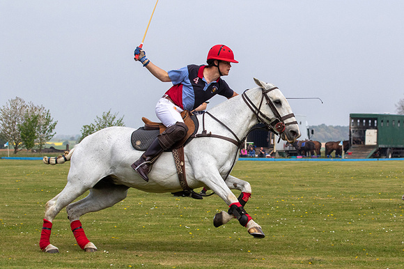 A single polo player at speed