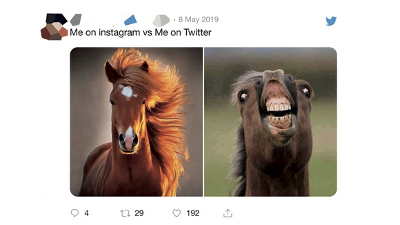 A tweet using my Flehmen photo