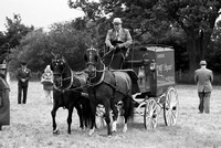 Carriage Driving in Black and White