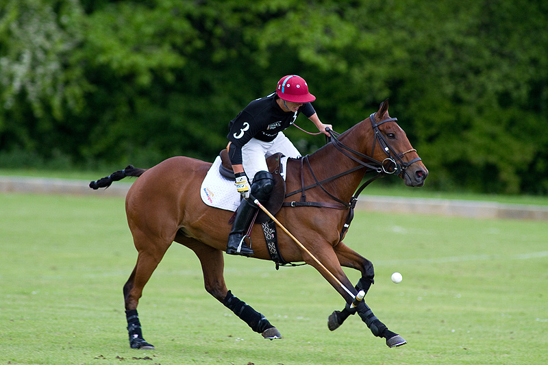 Best of British Polo