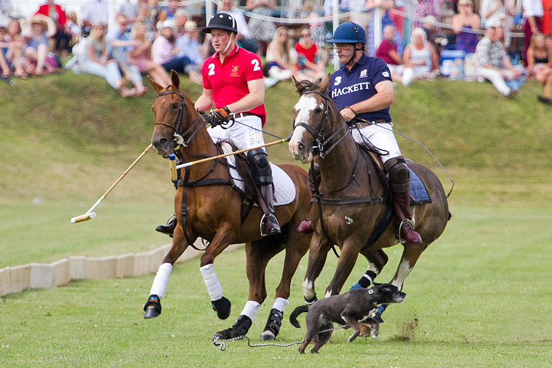 Prince Harry playing in the Rundle Cup